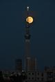 [月][夜景][スカイツリー]満月(2020-05-07 18:44)