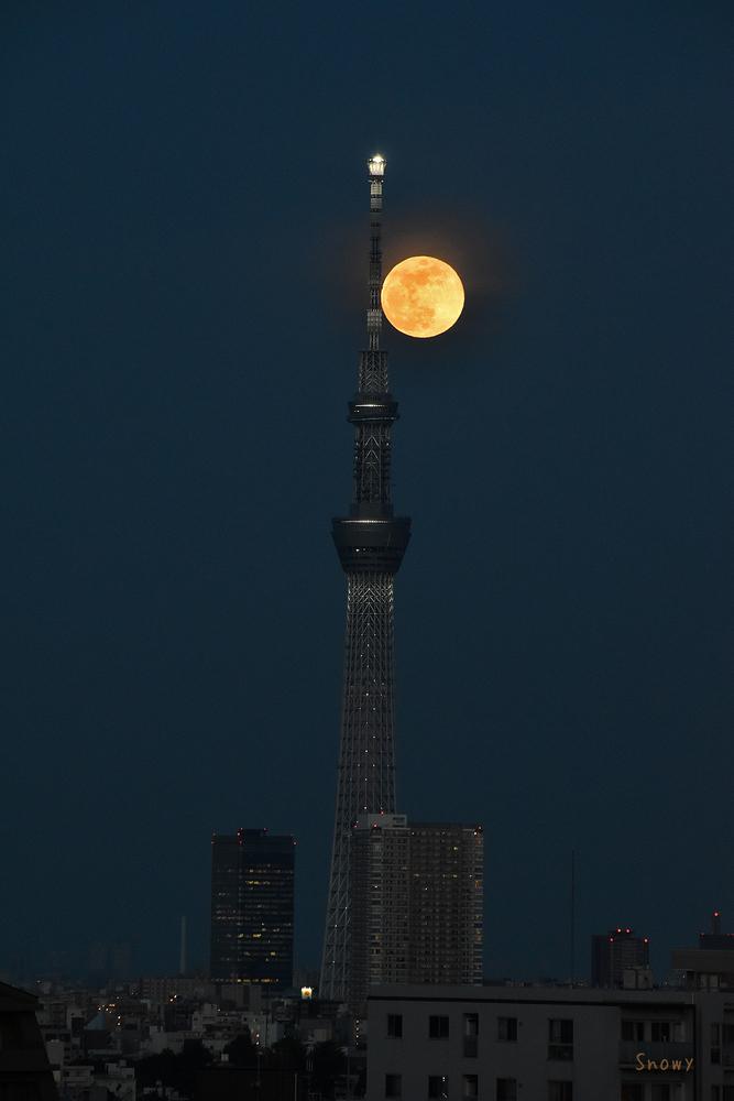 満月(2020-05-07 18:45)