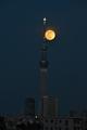 [月][夜景][スカイツリー]満月(2020-05-07 18:45)
