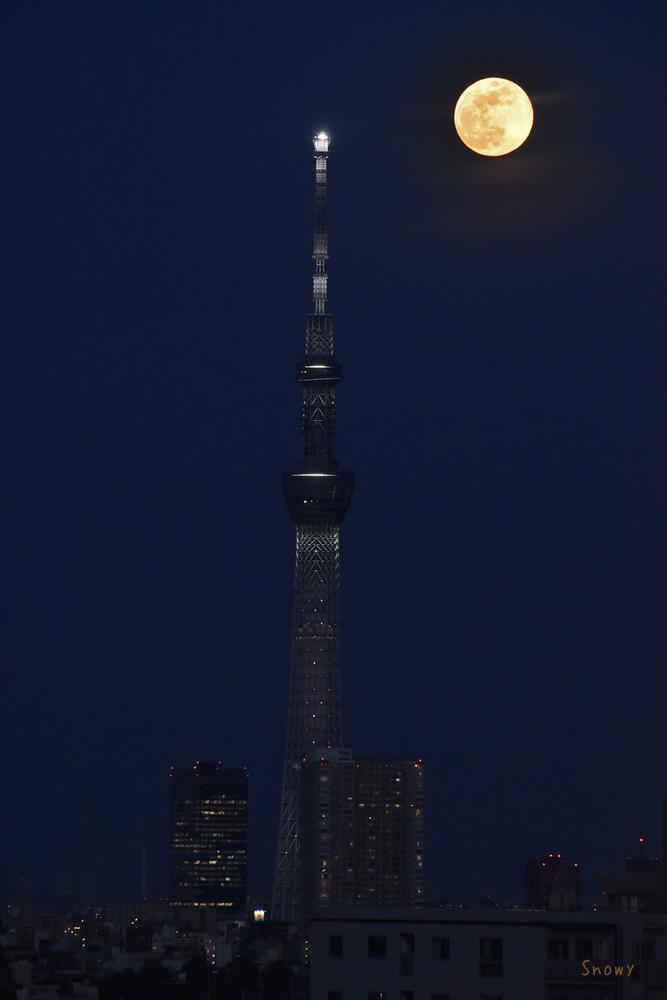 満月(2020-05-07 18:51)