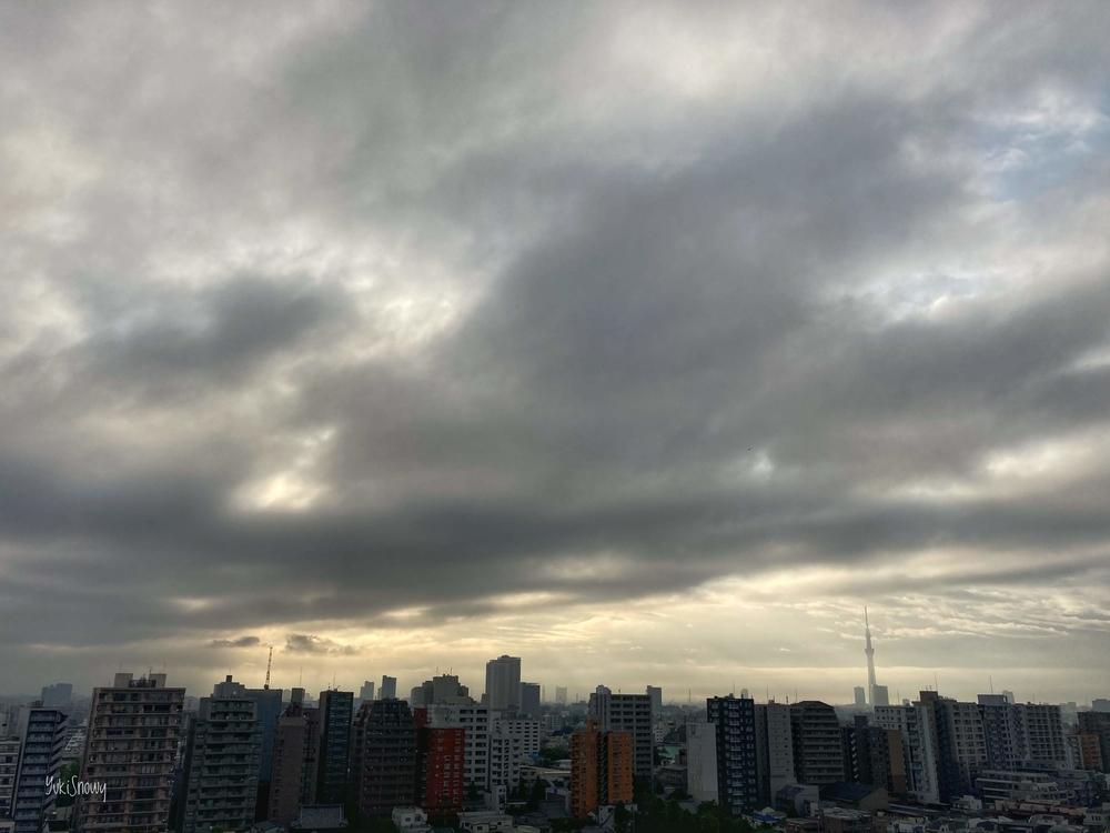 (2020-05-11 06:02)