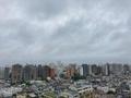 [空][雲][東京][朝](2020-05-20 06:02)