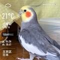 [Instaweather]WeatherShot(2020-05-16)