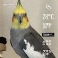 [Instaweather]WeatherShot(2020-05-17)