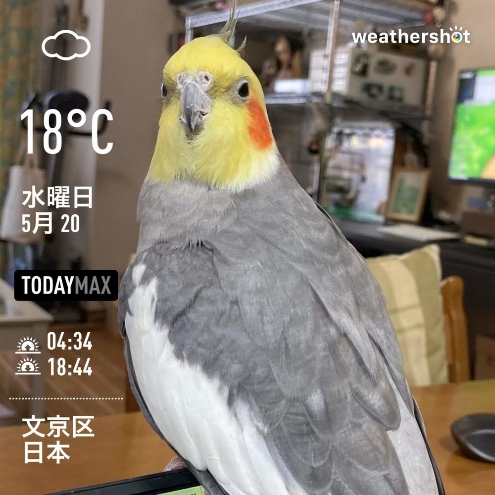 WeatherShot(2020-05-20)