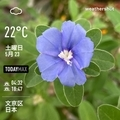 [Instaweather]WeatherShot(2020-05-23)