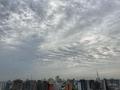 [空][雲][東京][朝](2020-05-26 06:04)