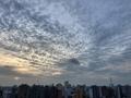 [空][雲][東京][朝](2020-05-31 04:45)