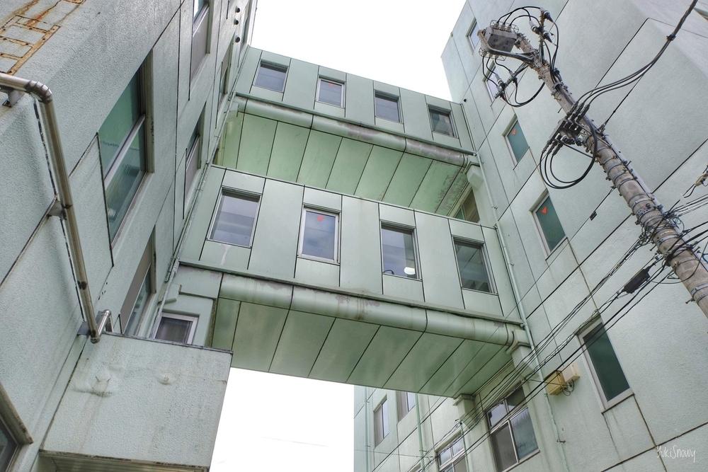 東京健生病院(2020-05-23)