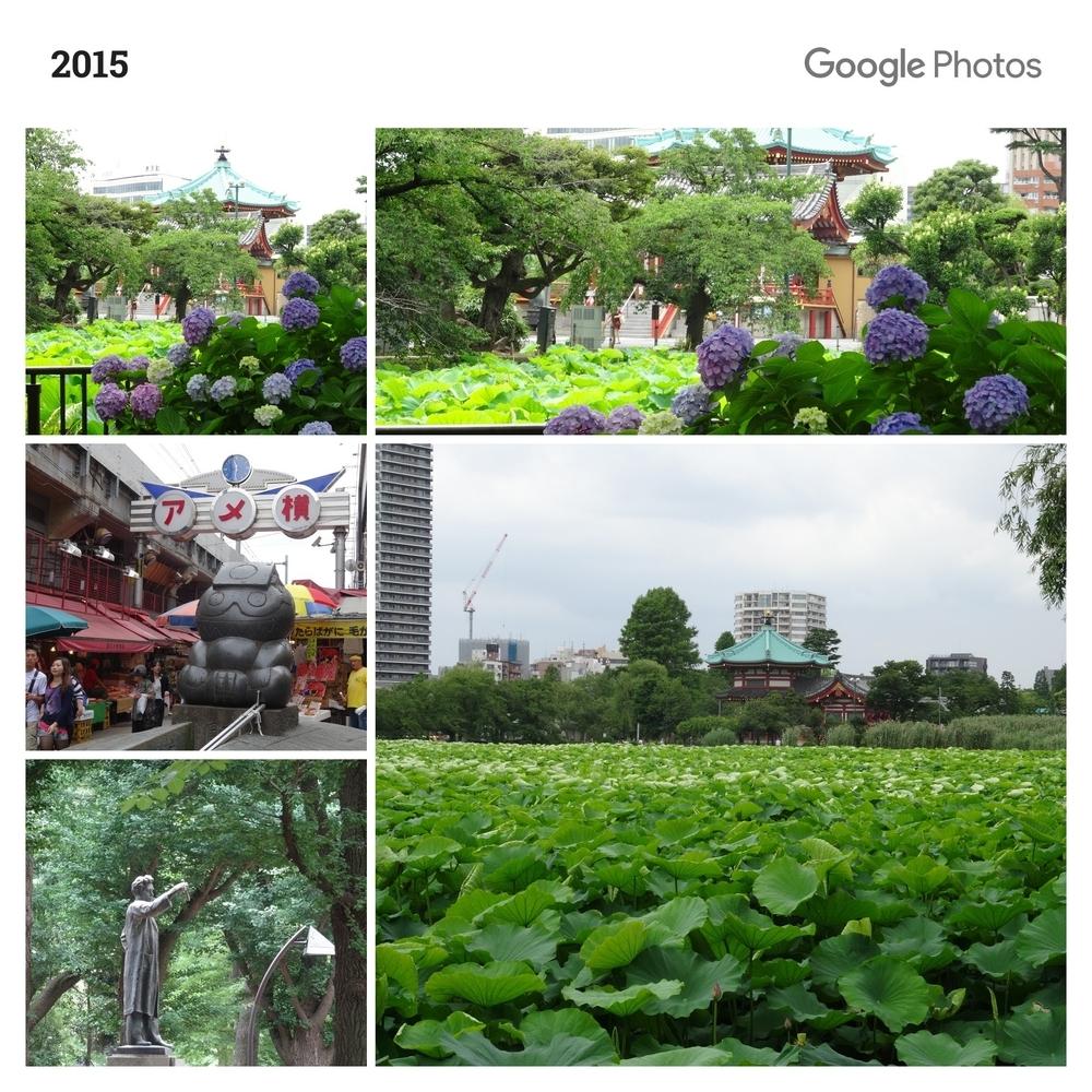 上野(2015-06-17)
