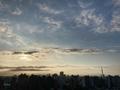 [空][雲][東京][朝](2020-06-29 05:23)