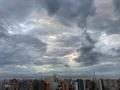 [空][雲][東京][朝](2020-07-07 05:10)