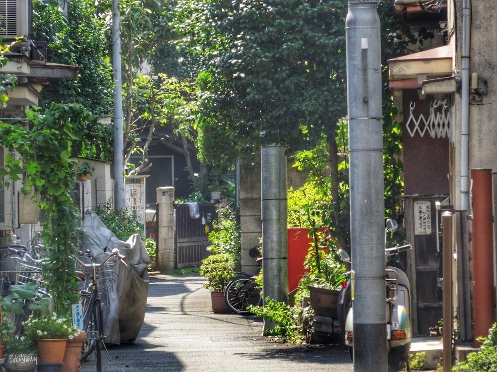 谷中(2013-07-09)