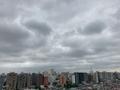 [空][雲][東京][朝](2020-07-22 06:22)