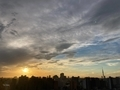 [空][雲][東京][朝](2020-07-27 05:07)