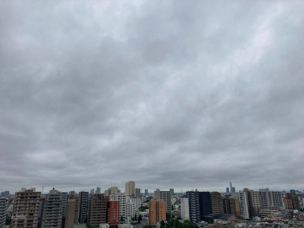 (2020-07-29 05:10)