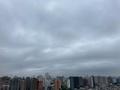 [空][雲][東京][朝](2020-07-31 06:04)