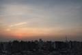 [朝][日の出][空][雲][東京](2020-08-13 05:01)