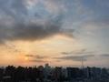 [空][雲][東京][朝](2020-08-15 05:28)