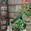 [Instaweather]WeatherShot(2020-09-05)
