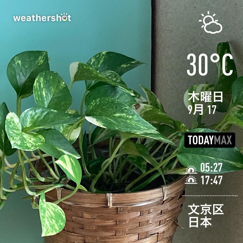 WeatherShot(2020-09-17)