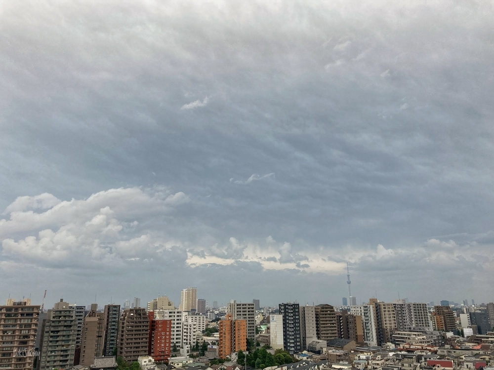 (2020-09-21 06:03)
