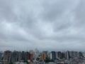 [空][雲][東京][朝](2020-09-23 06:52)