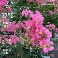 [Instaweather]WeatherShot(2020-09-22)