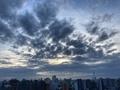 [空][雲][東京][朝](2020-09-29 05:58)