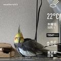 [Instaweather]WeatherShot(2020-10-01)