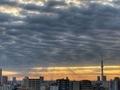 [空][雲][東京][朝](2020-10-06 06:07)