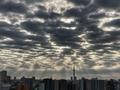[空][雲][東京][朝](2020-10-06 06:54)