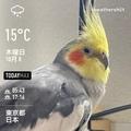 [Instaweather]WeatherShot(2020-10-08)