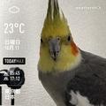 [Instaweather]WeatherShot(2020-10-11)