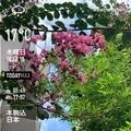 [Instaweather]WeatherShot(2020-10-15)