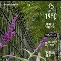 [Instaweather]WeatherShot(2020-10-19)