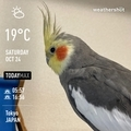 [Instaweather]WeatherShot(2020-10-24)