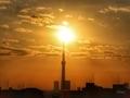 [東京スカイツリー][空][雲][東京][朝](2020-10-28 06:32)