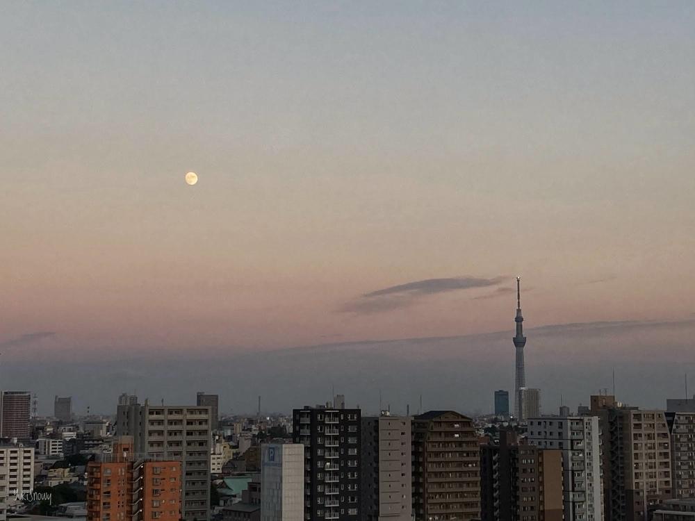 十三夜(2020-10-29 16:47)