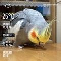 [Instaweather]WeatherShot(2020-11-19)