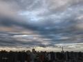 [空][雲][東京](2020-11-23 15:52)