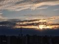 [空][雲][東京][朝](2020-11-29 06:52)