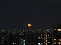 [空][東京][月]十六夜(2020-12-01 17:10)