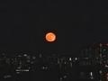 [空][東京][月]十六夜(2020-12-01 17:11)