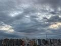 [空][雲][東京][朝](2020-12-02 06:42)