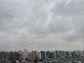 [空][雲][東京][朝](2020-12-03 08:50)