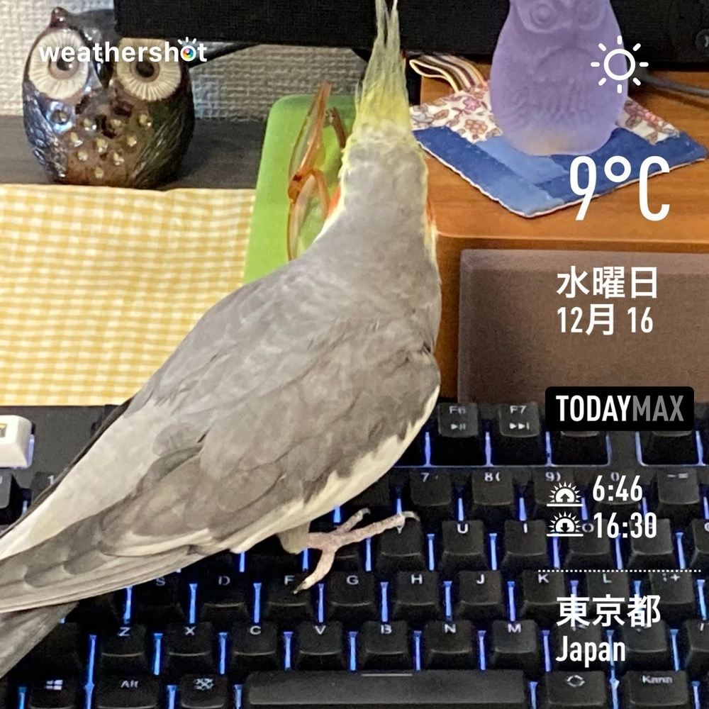 WeatherShot(2020-12-16)