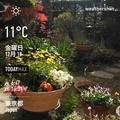 [Instaweather]WeatherShot(2020-12-18)