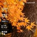 [Instaweather]WeatherShot(2020-12-20)