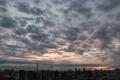[空][雲][東京][朝](2020-12-27 06:48)